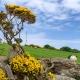 Fotoreis Noord-Ierland - ©Johan Wieland