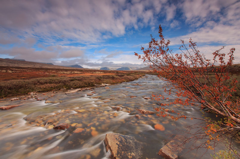 Fotoreis Colours of Rondane - ©Smitinbeeld
