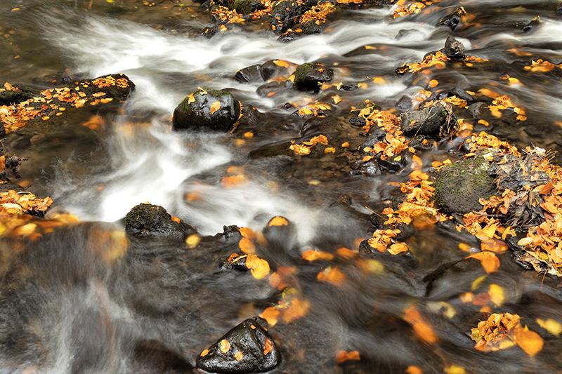 fotoreis Auvergne - ©Kristel Schneider