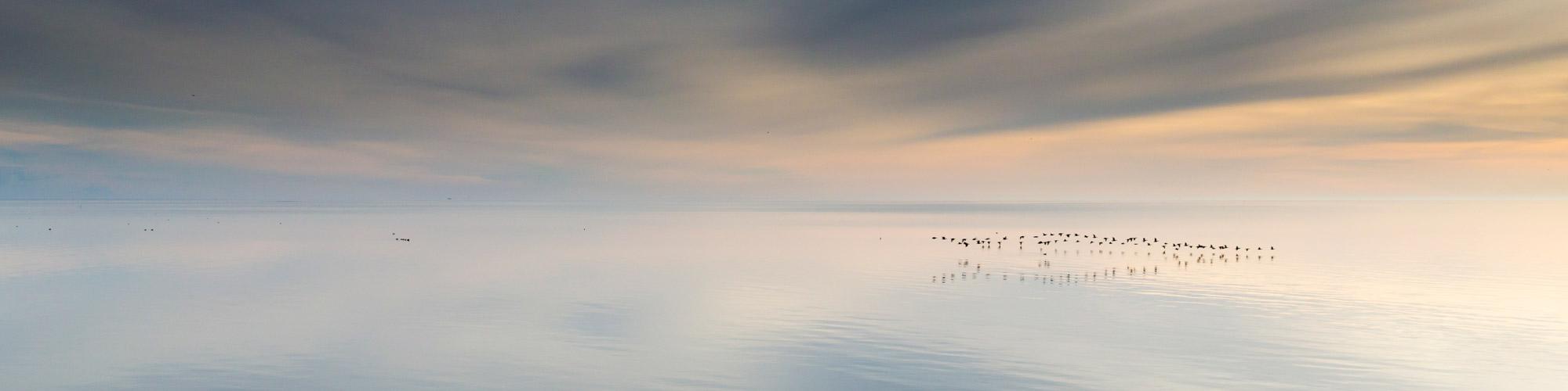 ©Smitinbeeld - Texel - fotoworkshop
