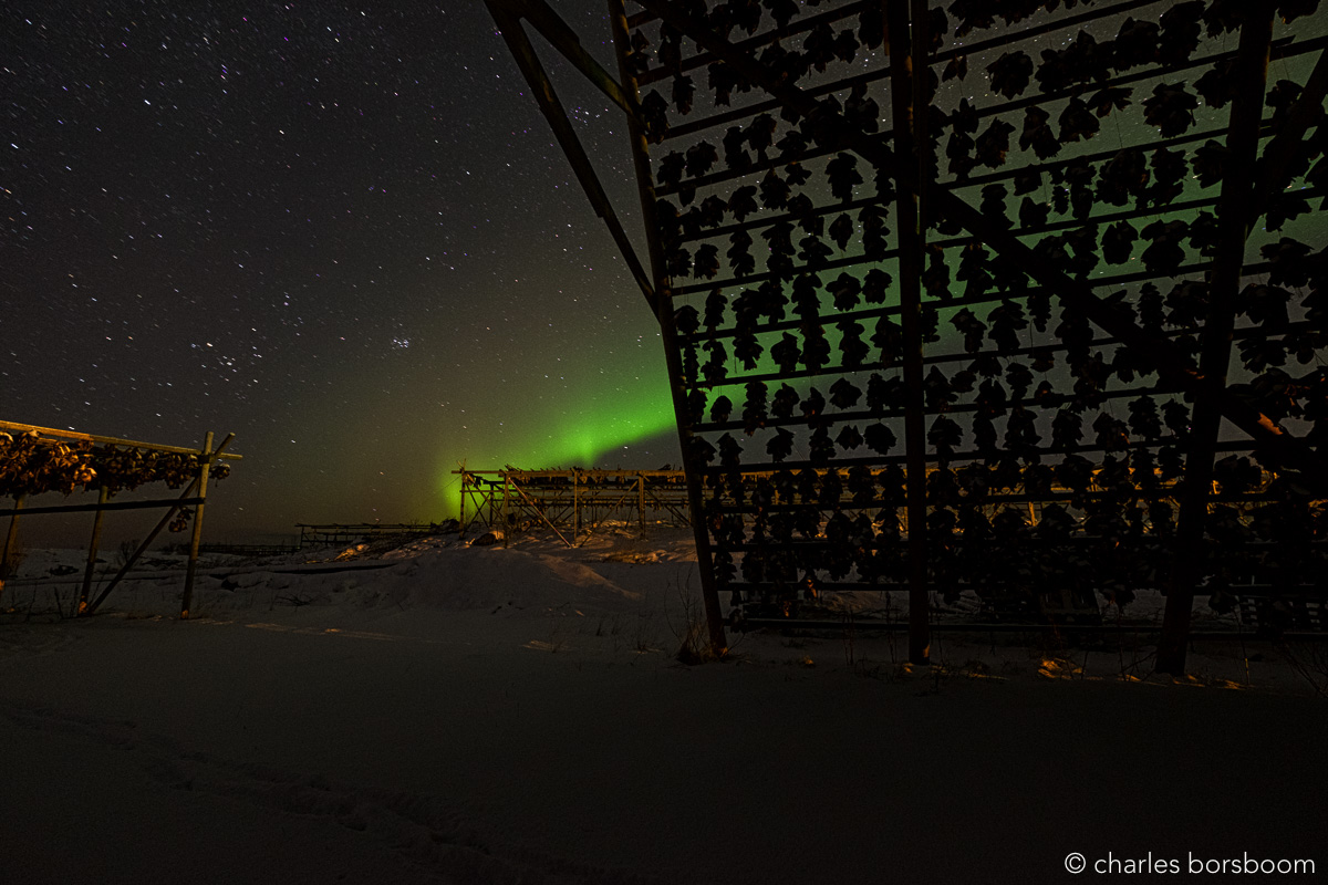 ©Charles Borsboom - Aurora Lofote