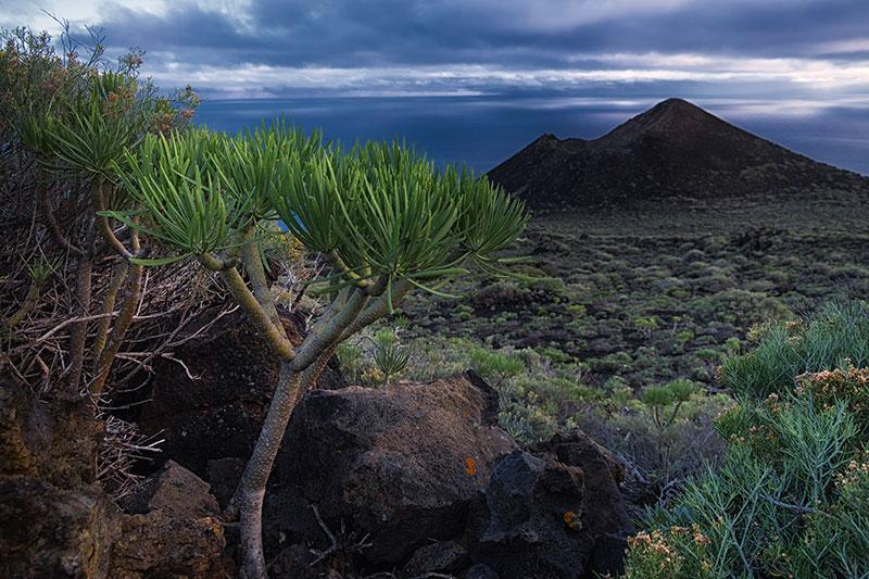 La Palma - ©Charles Borsboom