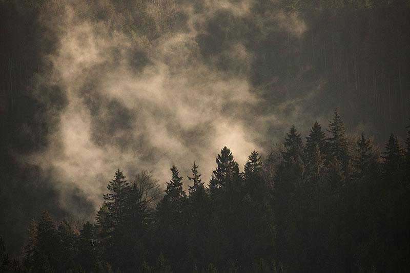 ©Bob Luijks - Sachsische Schweiz - Duitsland -fotoreis