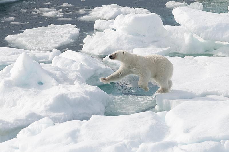 Spitsbergen - ©Jan Vermeer