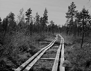 Masterclass Noord-Finland en Noorwegen - ©Jeroen Toirkens