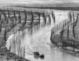 Xiapu - China - ©Charles Borsboom
